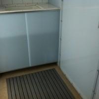 Studio Bathroom 2009 polygal, aluminum, fiberglass